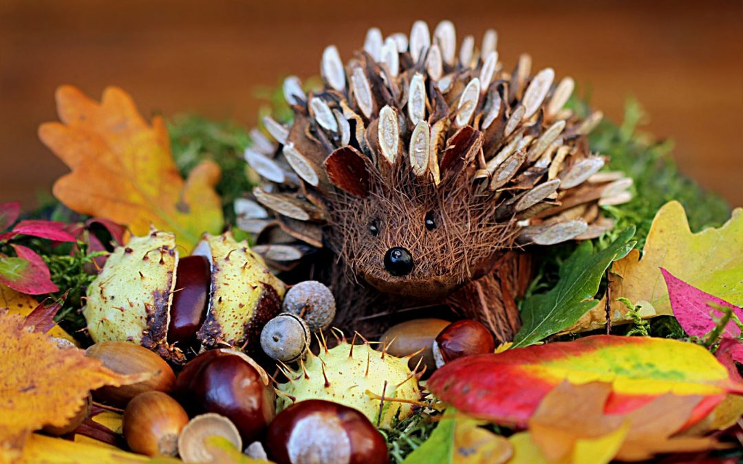Autumn Crafts – Bringing the Outside Indoors