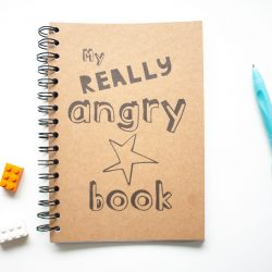My REALLY Angry Book