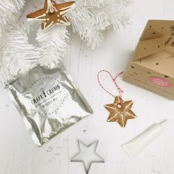 Star Biscuit Bauble Kit Party Bag