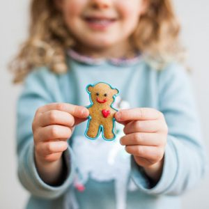 Teddy Bear Biscuit Kit