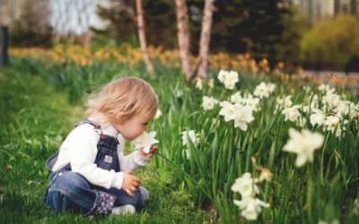 Gardening activities for children and families during isolation