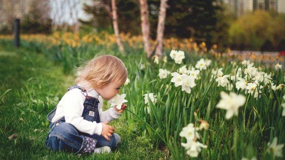 10 gardening activities for children and families