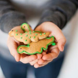 letterbox mini dinosaur biscuit